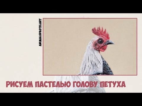 Рисуем пастелью голову петуха / Pastel speed drawing rooster head