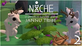 The Curious Deer Twins!! • Niche: Jannu Tribe - Episode #2