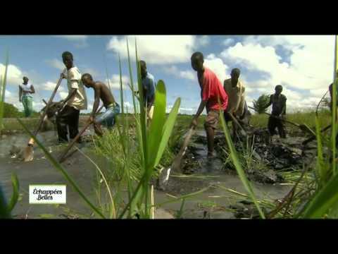 Casamance - Echappées belles