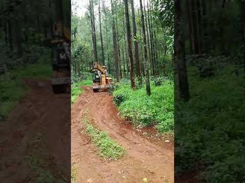 Hydra crane work at timber land..