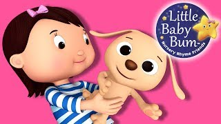 LittleBabyBum Tarafından Küçük Köpek Yavrusu Şarkı | Tekerleme | Şarkı!
