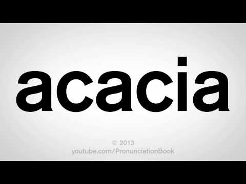 How to Pronounce Acacia