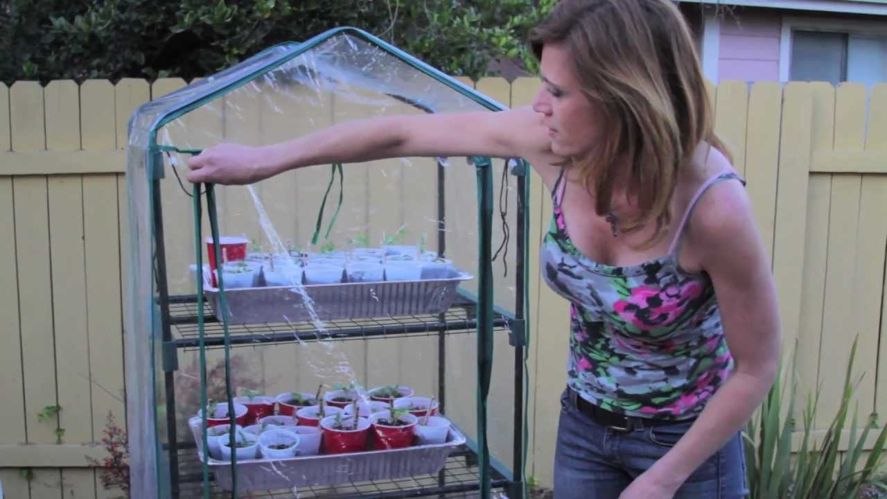 Starting Seeds Indoor With Kim Part 3 Of 5 Youtube