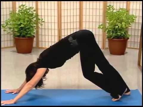 MBSR Yoga #2
