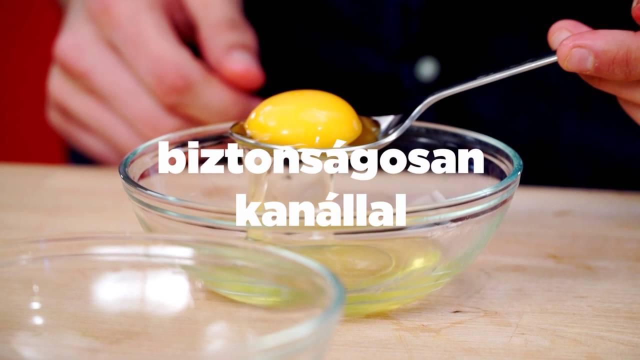 helminth tojás ciszták lamblia)