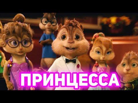 Элвин и Бурундуки поют Принцесса (Бабек Мамедрзаев)