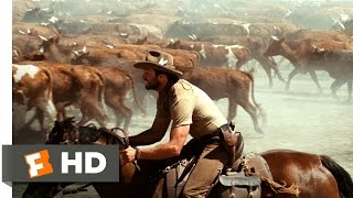 Australia (3/5) Movie CLIP - Stopping The Stampede (2008) HD