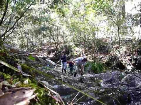 creek gold prospecting australia