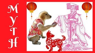 CHINESE ZODIAC MYTH with Martin