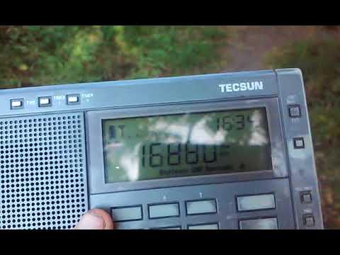 16880 kHz TAH Turk Radio Istanbul CW Marker