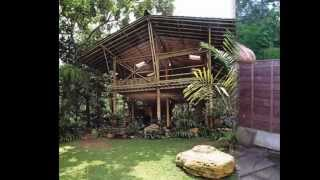 bamboo house for sale