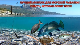 Лучший монтаж для рыбалки на Черном море Отводной поводок для морской рыбалки Ловит всю рыбу