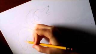 Dibuja un zorrillo / Dibuja una mofeta / Draw a skunk
