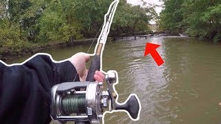 fishing-risky-backwaters-for-catfish-ft-northwoods-angling