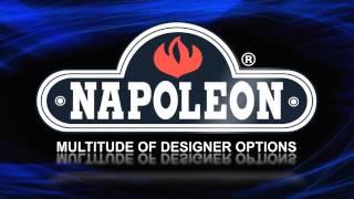 Napoleon XIR4 Gas Insert Fireplace - eFireplaceStore.com