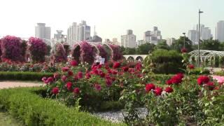 Ttukseom Resort Station, Rose Garden Summer 2014