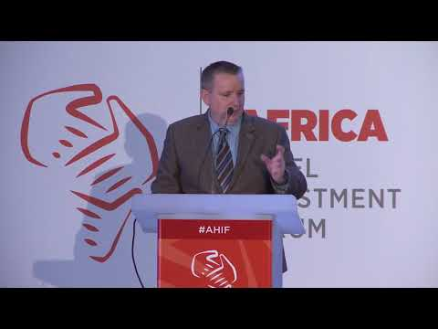 AHIF Conference 2017 Brands Innovation Update   Vib