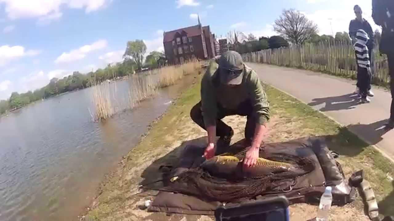 Urban Fishing London