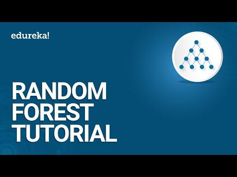 Random Forest Tutorial | Random Forest in R | Machine Learning | Data Science Training | Edureka