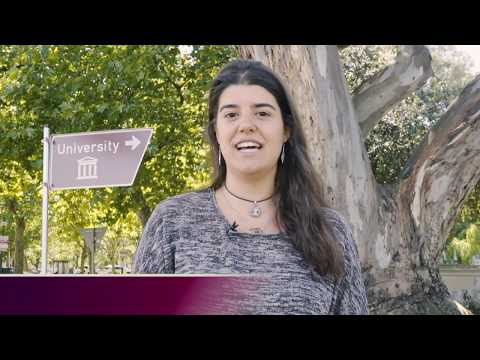 Explore Study Opportunities At Stellenbosch University