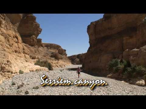 Namibia 2009 dvd