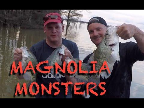Lake Washington MS  Hunting The 3 Pound Crappie