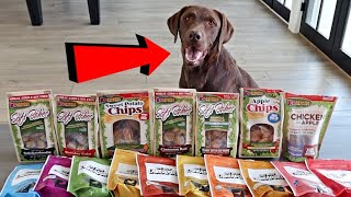 My Dog Review's 17 Different Treats!!