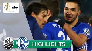 SV Sandhausen - FC Schalke 04 1:4   Highlights DFB-Pokal 2016/17 - Achtelfinale