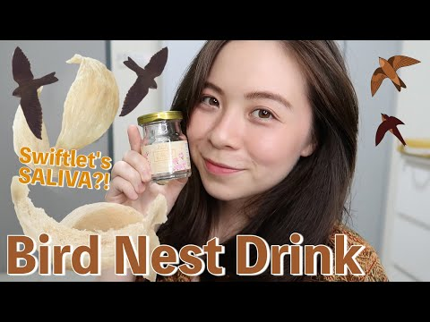 I Drank Bird's Nest (Bird's Saliva) For 7 Days! \\ JQLeeJQ