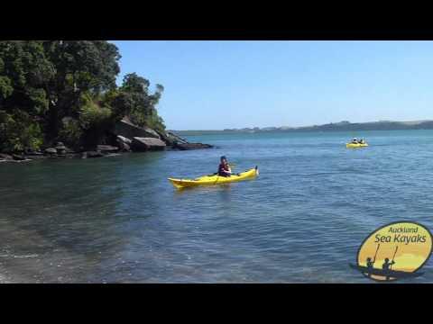 Browns Island / Motukorea Kayak Tour