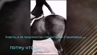 Видео о конном спорте