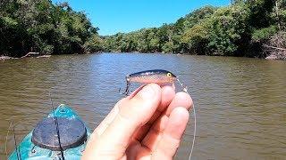 NUNCA JULGUE UMA ISCA PELO TAMANHO. Pescaria! PARTE 2