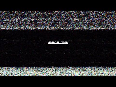 PURPOSE TOUR [2016] — MOXIE RAIA X POST MALONE
