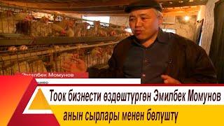 Тоок бизнести өздөштүргөн Эмилбек Момунов анын сырлары менен бөлүштү