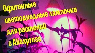 Офигенные светодиодные лампы для растений(Офигенные светодиодные лампы для растений распаковка. Офигенные светодиодные лампы для растений с Aliexpress...., 2016-03-06T08:15:03.000Z)