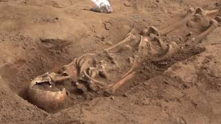 AMAZING archaeological dig