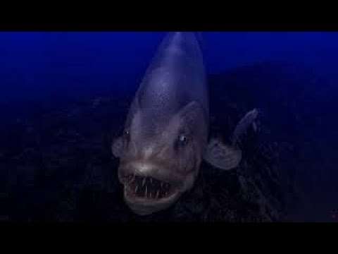 Ancient Ocean Screensaver Mixed Mode (4K)