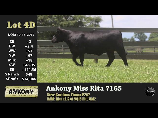 Ankony Lot 4D