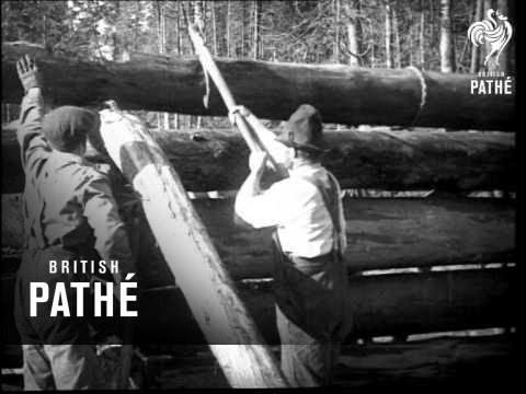 Lumbering In Northern Ontario (1923)