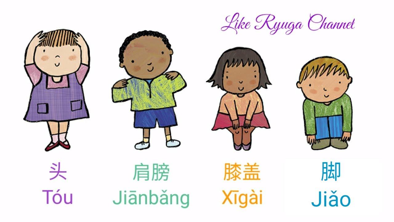 Tou Jianbang Xigai Jiao - 头肩膀膝盖脚 - Head Shoulders Knees and Toes - Kepala  Pundak Lutut Kaki Mandarin - YouTube