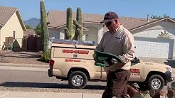Arizona Pest Control | COMPLETE Pest Protection