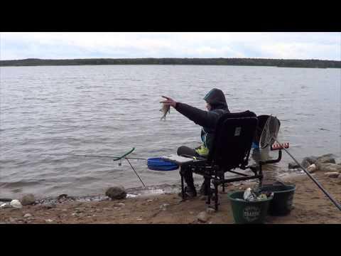 отчет о рыбалке вилейка