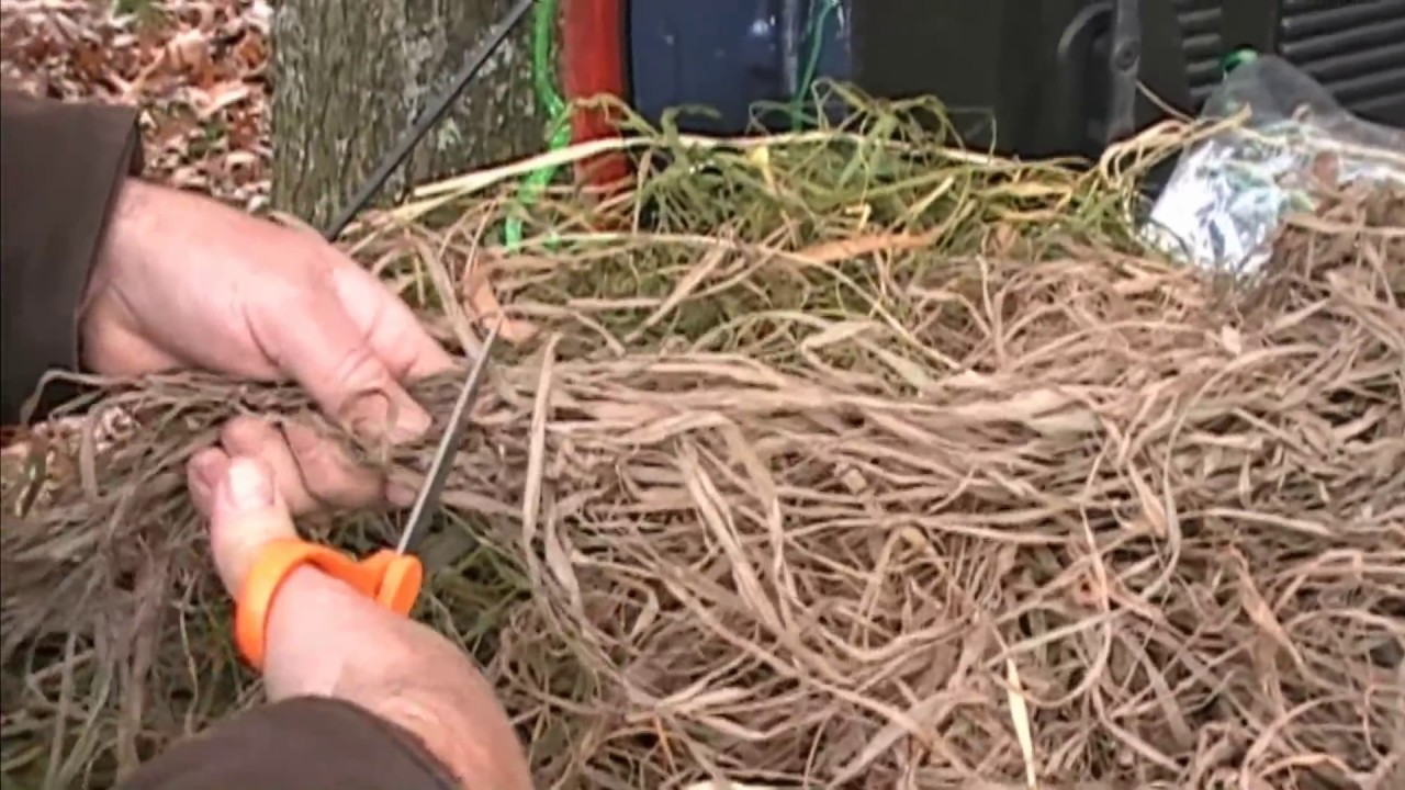 Hunting Blinds How To Brush Out Your Layout Blind Youtube