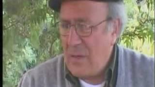 Perspecplejia Gabriel Salinas 2