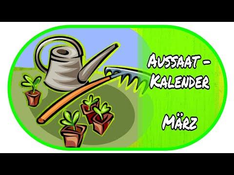 🌻Aussaatkalender März - Vorzucht Zu Hause 🌻// Garten // Anzucht //Aussaat // Gewächshaus