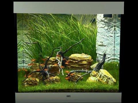 Juwel Aquarium Lido 200 Einrichtungsbeispiel / Tutorial