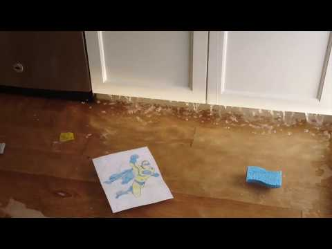 Water Removal Fire Damage Restoration Mold Remediation