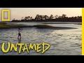Untamed With Filipe DeAndrade Trailer Nat Geo Wild mp3