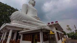 5500 steps to Adams peak | Perfect Sunrise | Kandy Ambuluwawa temples | Follow Mike in Sri Lanka
