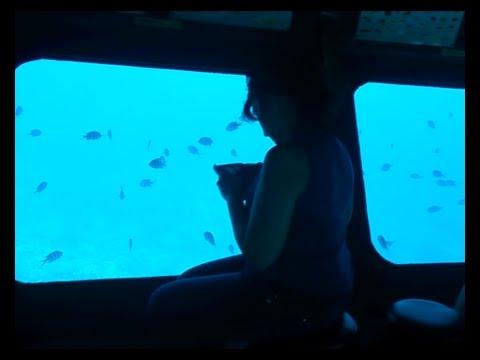 Seascope Fische beobachten Tauchen Submarine Ägypten